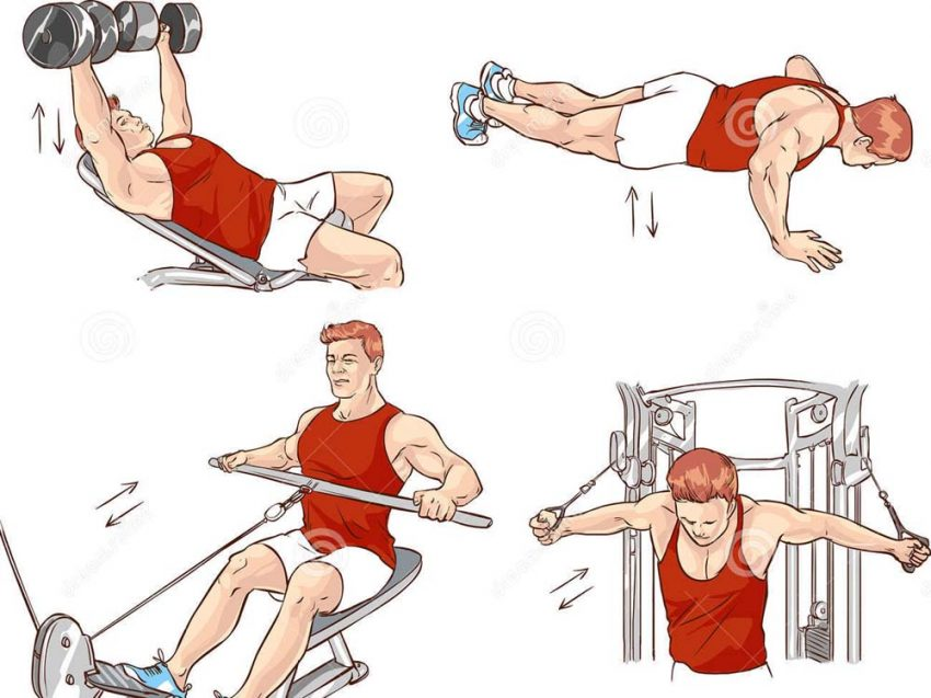 Article How to design create a program of bodybuilding and fitness exercises