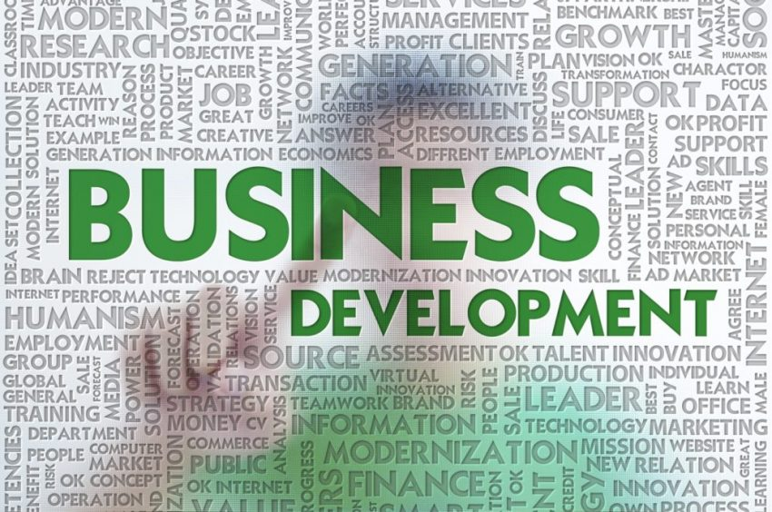 The main axes of business development skills that every business owner can learn